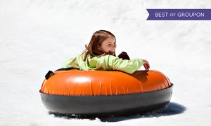 Swadlincote Ski centre: Sno-Tubing and Tobogganing for Two or Four with Pizza at Swadlincote Ski Centre (Up to 55% Off)