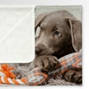 "Personalized 60""x40"" Fleece Photo Blanket (1- or 2-Pack)"