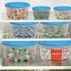 Milton Food Storage Containers with Blue or Pink Lids (6-Piece)
