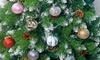 12-Piece Set of Globe Ornaments