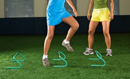 One or Three Months of Athletic Training for Teens or Adults at Velocity Sports Performance (Up to 75% Off)