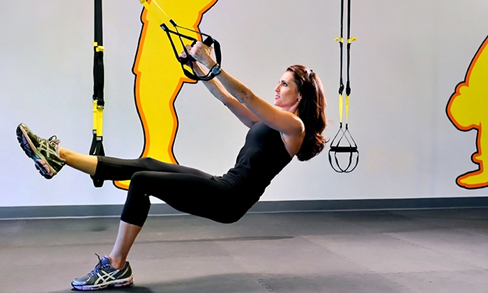 Fitness With Insight - Bluffview: Five or Ten TRX Suspension Training Sessions or a Month of Unlimited Sessions (Up to 51% Off)