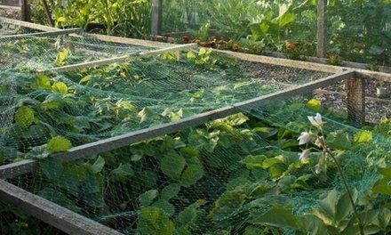 6Pack or 12Pack of Vivo Protective Garden Netting