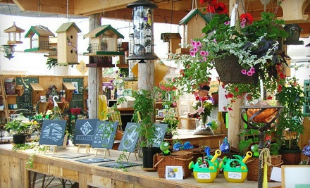 $30 Groupon to Hasselman Landscaping & Garden Centre - Hasselman Landscaping & Garden Centre in Ridgeway