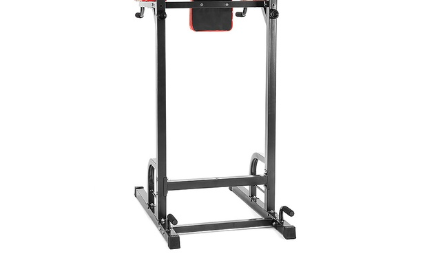 $129.95 for a Powertrain Pull-Up Power Tower