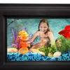 Betta Memories Frame Aquarium