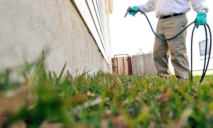 Bulwark Exterminating - Piedmont Triad: $74 for an Interior and Exterior Extermination Service from Bulwark Exterminating ($180 Value)