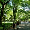 Up to 60% Off Central Park Walking Tour