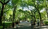 Happy Hummingbird Walks NYC: Guided Walking Tour of Central Park for Two, Four, or Six from Happy Hummingbird Walks NYC (Up to 60% Off)