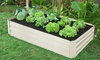 Two Outdoor Raised Planter Beds