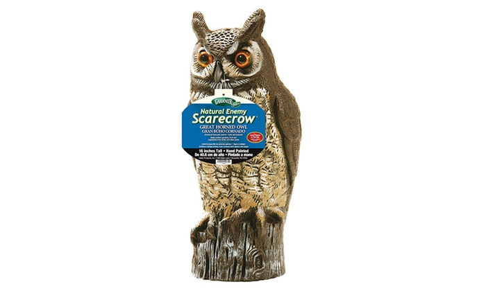 Natural Enemy Great Horned Owl Scarecrow