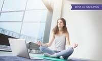 Online Yoga Course for Beginners from JD Courses (94% Off)