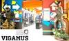 Vigamus - VIGAMUS: Vigamus - ingressi al più grande museo del videogioco a Roma (sconto fino a 63%)