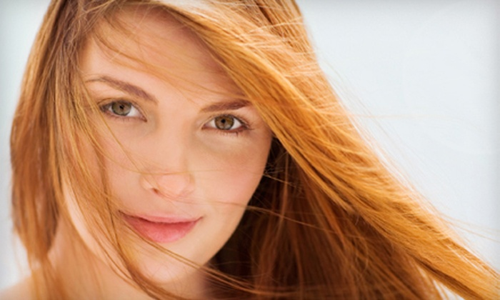 Jolene Manz at Your Tropical Escape - London: Cut and Conditioning with Options for Full Colour or Highlights with Jolene Manz at Your Tropical Escape (Up to 68% Off)