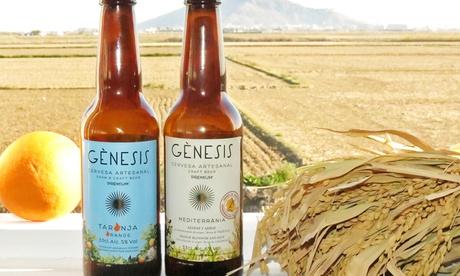 Visita la fábrica de cerveza artesanal Gènesis con cata ilimitada, coca y tostas desde 8,90 € junto a L'Albufera