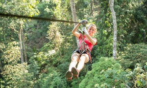SA Forest Adventures: Zipline Tree-Top Slide Experience from R199 for One with SA Forest Adventures (Up to 57% Off)