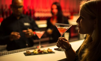 Cocktailworkshop + experience inclusief 3 cocktails bij House of Bols in Amsterdam