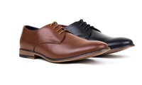 Harrison Mens Lace-Up Derby Shoes (Black or Brown)