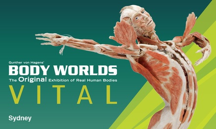 $25 for Ticket to Body Worlds Vital, until 25th Feb, Sydney Town Hall Up to $32 Value