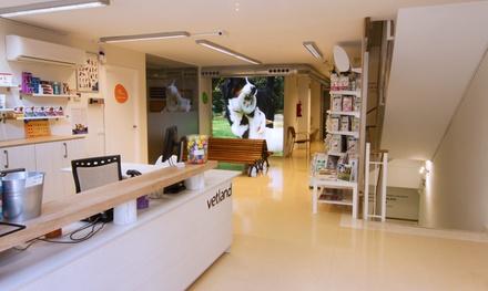 Chequeo y vacuna o esterilización para perro o gatodesde 14,90 € en Vetland