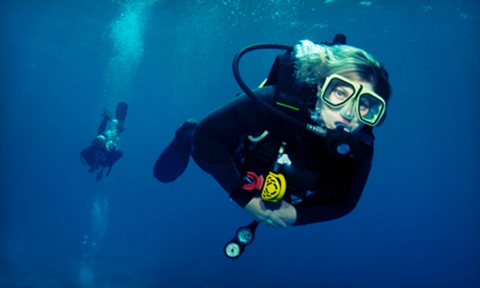 Gigglin' Marlin Divers - The Museum District: Discover Scuba Course or PADI Open-Water Certification Course at Gigglin' Marlin Divers (Up to 60% Off)