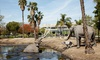 Book Now: Admission for One to La Brea Tar Pits and Museum
