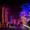 Up to 26% Off Tickets to ZooLights Value Nights at Phoenix Zoo