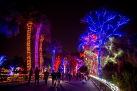 Up to 26% Off Tickets to ZooLights Value Nights at Phoenix Zoo at ZooLights at the Phoenix Zoo, plus 6.0% Cash Back from Ebates.