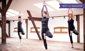Dom Kultury Jogi: Karnet open na jogę od 69 zł w Domu Kultury Jogi (do -56%)