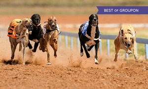 Love The Dogs: Greyhound Racing With Burger and Drink For Two for £8 At Love The Dogs (Up to 74% Off)