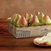 44% Off Maverick Royal Riviera Pears from Harry & David