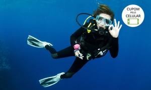 Submerso Esportes Aquáticos: Submerso Esportes Aquáticos – Barra: batismo, aula teórica, mergulho, fotos e vídeos para 1 ou 2 pessoas