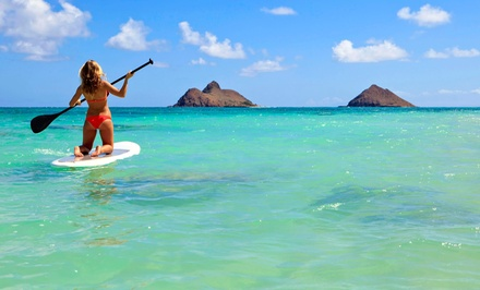 3-Hour Paddleboard Rental for 1 or 2, or 1-Hour Paddleboard Tour for 2 from BC Surf & Sport (Up to 75% Off)