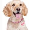 Twigo Silicone Pet ID Tags
