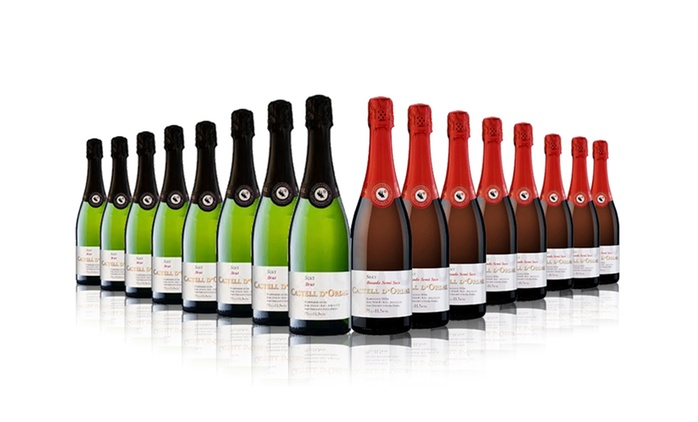 16 Bottles of Castell D'Ordal Cava Brut, Rose or Mixed Case for £59.99 With Free Delivery (63% Off)