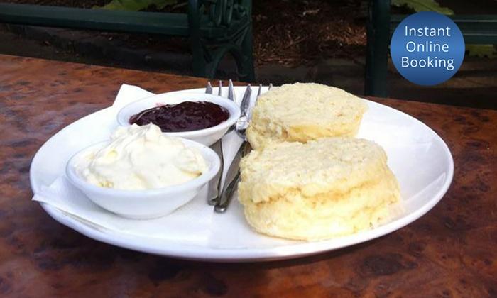 Devonshire Tea for Two - Geelong Botanical Gardens Tea House