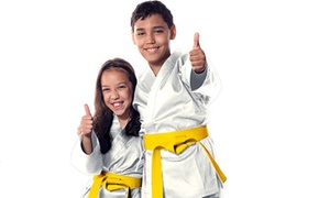 Eclipse Martial Arts LLC: $39 for $149 Worth of Martial-Arts Lessons — Eclipse Martial Arts Llc