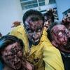 Entrada al Survival Zombie