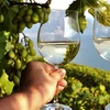 60% Off Wine-Country Tour from Lee's Limousine