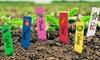 1, 2 of 3 verpakkingen van 100 etiketten voor planten
