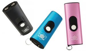 Mini USB Secure 22,000,000 Volt Keychain Stun Gun with Flashlight