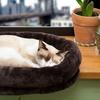 FurHaven Tiger Tough Cat Window Perches