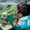 Up to 30% Off at Sea Life Kansas City