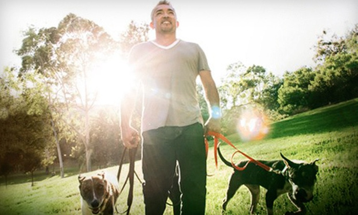 An Evening with Cesar Millan: The Dog Whisperer - The Riverside Theater: An Evening with Cesar Millan: The Dog Whisperer at The Riverside Theater on Saturday, March 2 (Up to $64.26 Value)