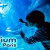 Aquarium de Paris en famille