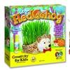 Grow a Hedgehog Wheatgrass Kit