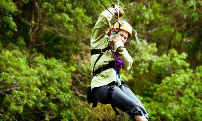 Cedar Lake Camp Zip Lines - Big Bear: Three-Line Zipline Tour for Two or Four at Cedar Lake Camp Zip Lines (Half Off)