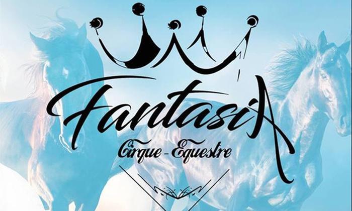 1 place pour enfant ou adulte en gradins ou chaise pour Fantasia Théâtre équestre dès 7 € à Puilboreau