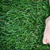 Up to 52% Off from Integrity Lawn Care