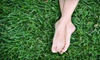 Integrity Lawn Care - Downtown Tulsa: Lawn Care Services from Integrity Lawn Care (Up to 52% Off). Three Options Available.